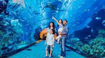 أفضل 10 أماكن سياحية فى شرم الشيخ تستحق زيارتك