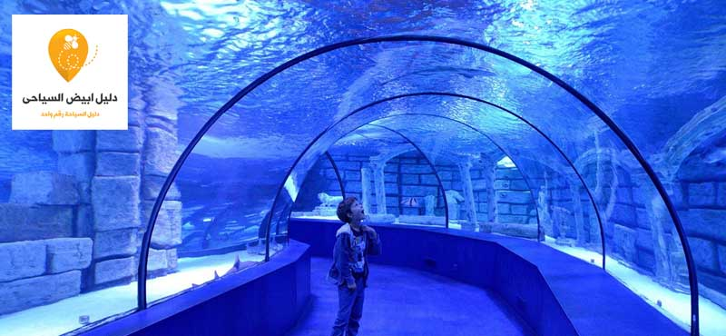 أفضل 8 أماكن سياحية زيارة فى الاسكندرية 2019 تعرف عليها