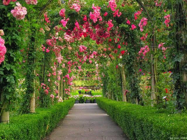 أفضل 10 حدائق بجدة