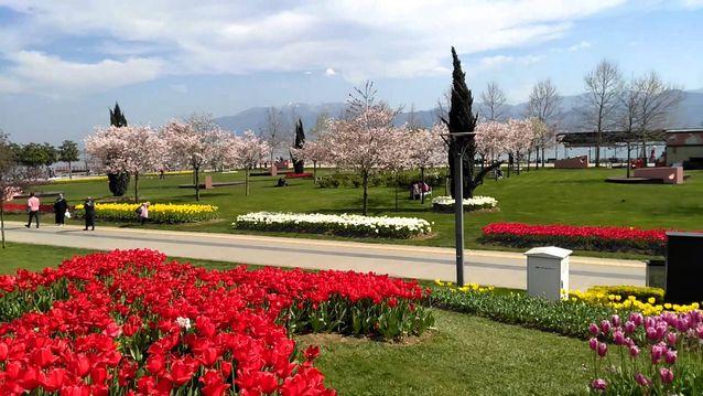حديقة سيكا ازميت